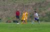 Marshfield High School Boys Soccer - 0089