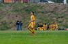 Marshfield High School Boys Soccer - 0111