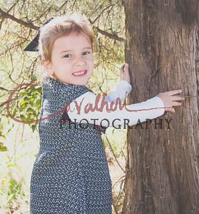 Vayla Fall 2015