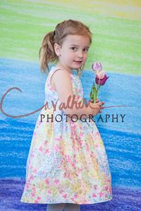 Vayla Spring 2015