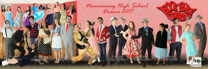 Nonnewaug High School 2016-2017