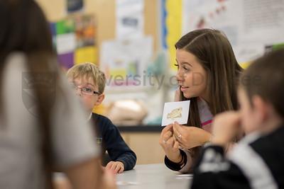 MA Education-School Workshop