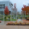 """November 11, 2015 (Veterans Day)<br /> <br /> """"FALL FOLIAGE"""" near the Anne Frank Tree<br /> <br /> William J. Clinton Presidential Library and Museum<br />  1200 President Clinton Ave.<br />  Little Rock, AR 72201<br />  Official website: <a href=""""http://www.clintonlibrary.gov"""">http://www.clintonlibrary.gov</a>"""