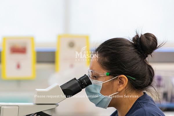 Microbiology Lab