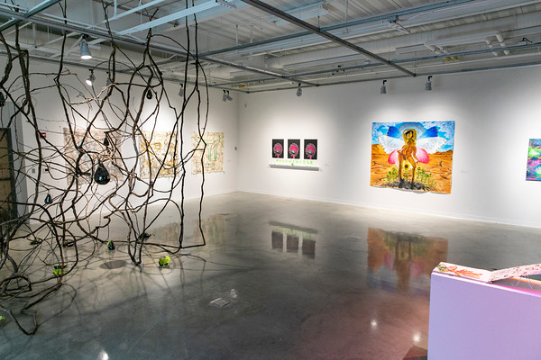 The Sleeping Beauty exhibit at the Gillespie Gallery features work by seven School of Art and Design students and recent alumni. Photo by: Shelby Burgess/Strategic Communications/George Mason University