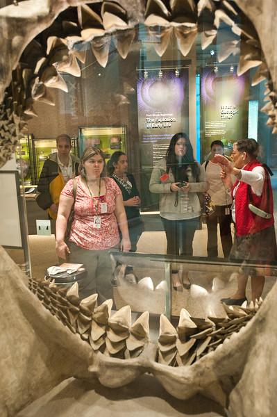 Mason LIFE Students visit the Natural History Museum in Washington DC.