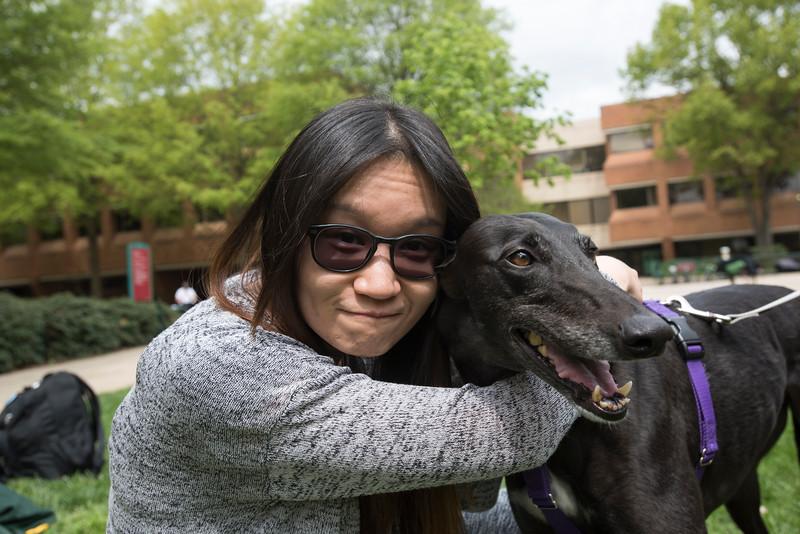CHSS Dog Day