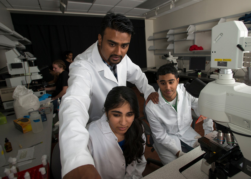 Professor Siddhartha Sikdar works with students in ta lab at the Krasnow Institute during the Aspiring Scientists Summer Internship Program (ASSIP) at Fairfax campus. Photo by Alexis Glenn/Creative Services/George Mason University