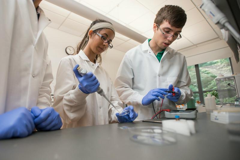 Krasnow Institute labs