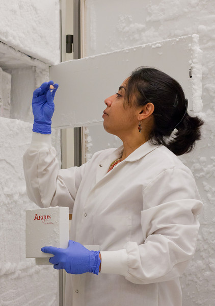 Aarthi Narayanan, Research Assistant Professor, works in a lab at the Biomedical Research Laboratory Center.