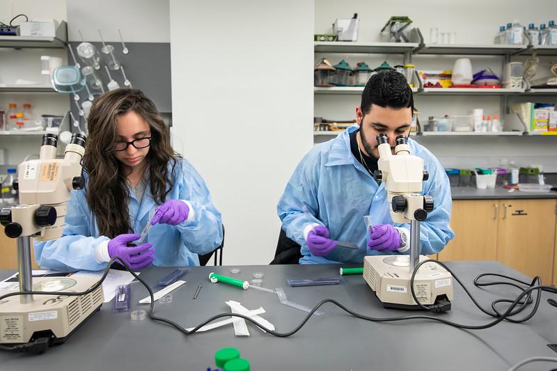 Neuroscience Lab.  Photo by:  Ron Aira/Creative Services/George Mason University