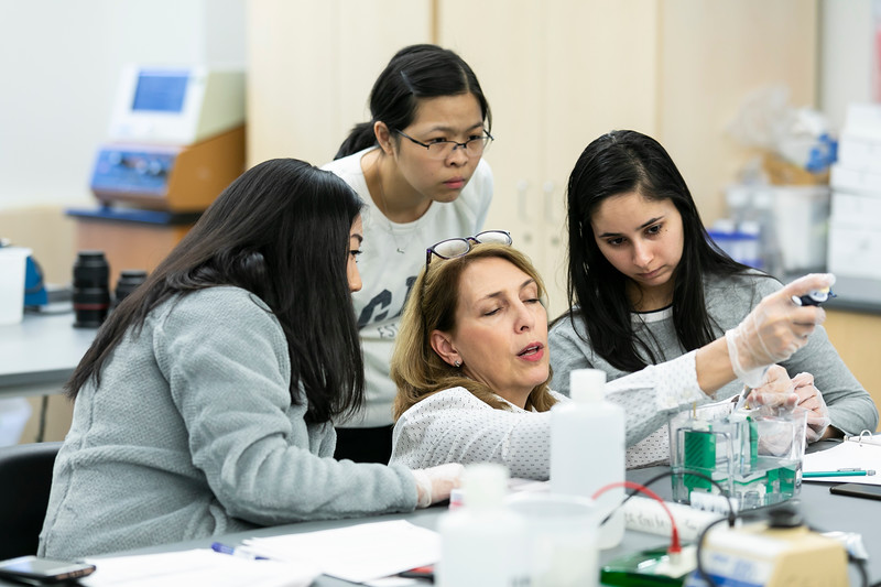 Peggy Einhorn's Biology lab class.  <br />  Photo by:  Ron Aira/Creative Services/George Mason University