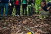 Students of the Smithsonian-Mason Semester for Conservation Studies program watch a box turtle as they participate in an urban wildlife conservation field trip to Rock Creek Park in Washington DC. Photo by Alexis Glenn