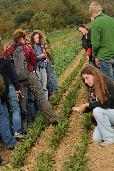 Students learning about sustainable organic farming practices.  Photo by Evan Cantwell/Creative Services/George Mason University