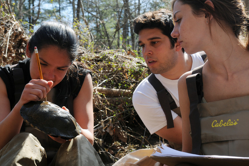 Smithsonian-Mason School of Conservation students research wood turtle populations in the field. Photo by Creative Services/George Mason University