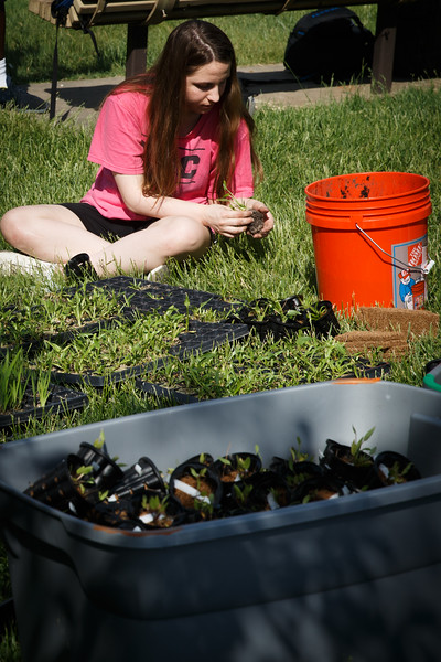 Students from environmental professor Changwoo Ahn's class launched a 1,700-plant floating wetland on Mason Pond Tuesday afternoon. The yearlong project brings together art and science students and is designed to clean the water as well as to spur ecological awareness. Photo by Craig Bisacre/Creative Services/George Mason University