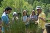 Wetland Mesocosm Compound