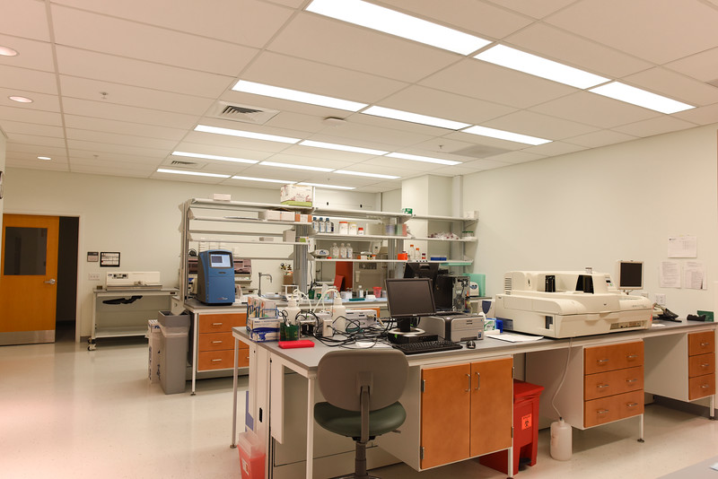 Institute for Biomedical Innovation