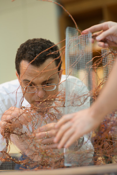 Giorgio Ascoli works on a collaborative SofAlab sculpture representing the mammalian brain funded by the Center for Consciousness and Transformation. Photo by Evan Cantwell/Creative Services/George Mason University
