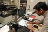 Nathalia Peixoto's Neural Engineering Lab