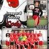 LHS Soccer_007_a