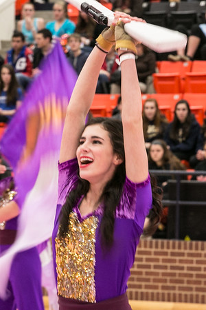 Aledo Colorguard at Winterguard Competition