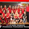 LHS F Vball Team_-001