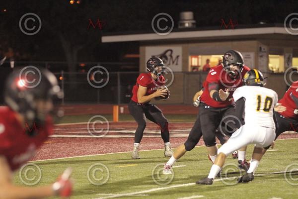 Area Game_045