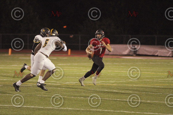 Area Game_142