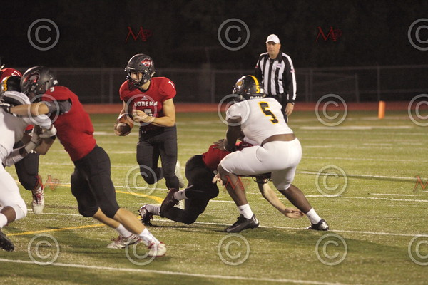 Area Game_125