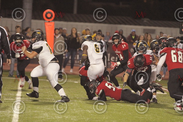 Area Game_231