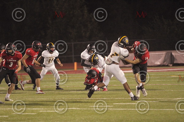 Area Game_109