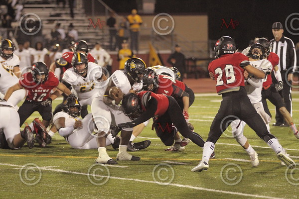 Area Game_145