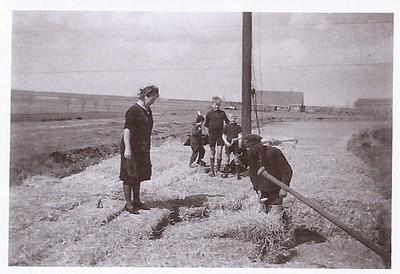 Strobalen laden in Eeserveen 1935-1940
