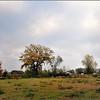 Broek in Linkhout