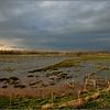 Storm in het broek van Linkhout