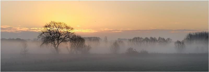 Natuurpunt Schulensmeer & Het broek in Linkhout