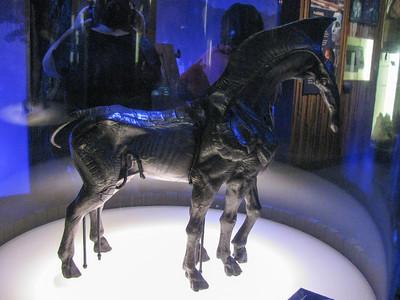 SciFiMuseum-20110813-086