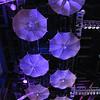 SciFiMuseum-20110813-068