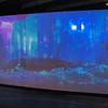 SciFiMuseum-20110813-070