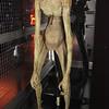 SciFiMuseum-20130723-087