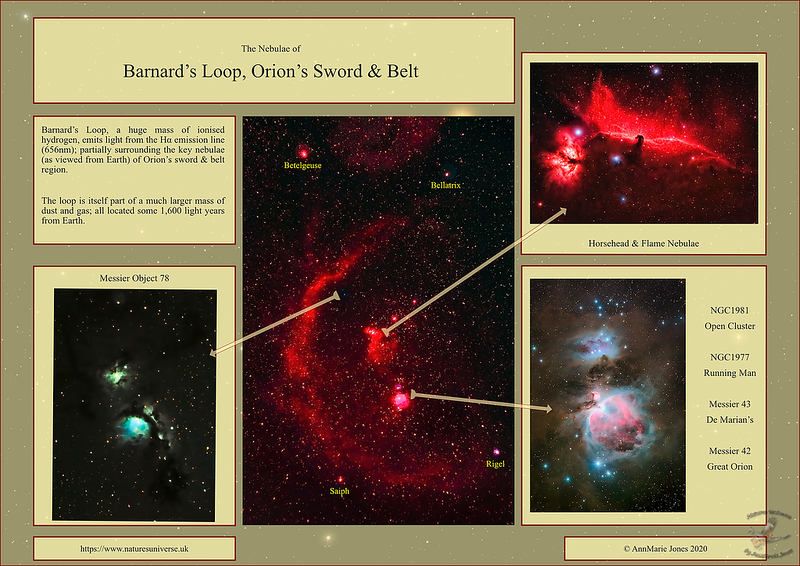 Barnards Loop Nebulae