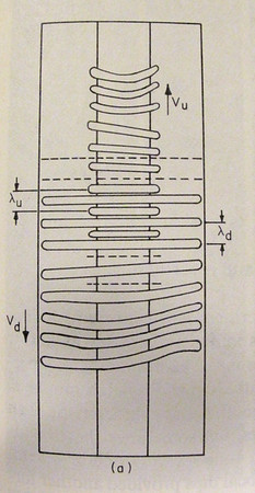 #97. Weidman and Mehrdadtehranfar. Sketch of the wave systems at moderate supercritical Rayleigh numbers. Front view.