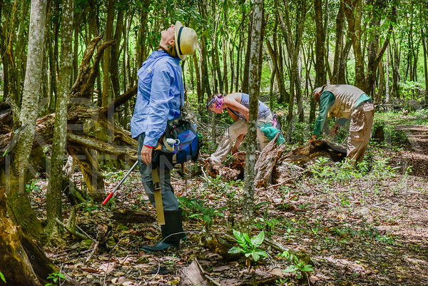 Fieldwork in Zapata