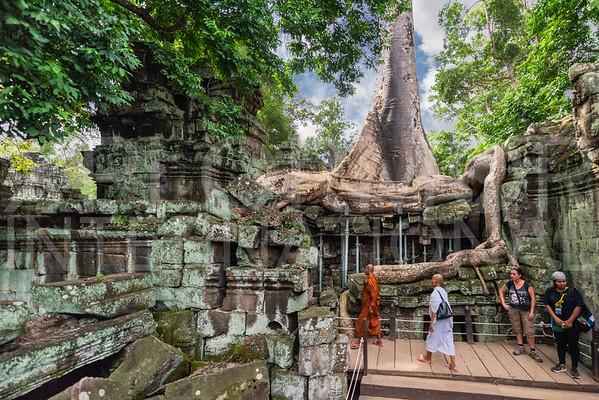 Monks at Ta Prohm Temple