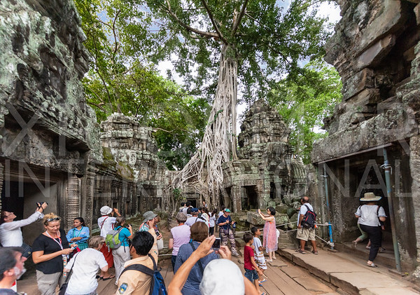Tourists at Ta Prohm Temple