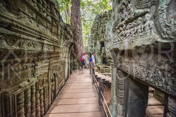 WH Volunteers at Ta Prohm Temple