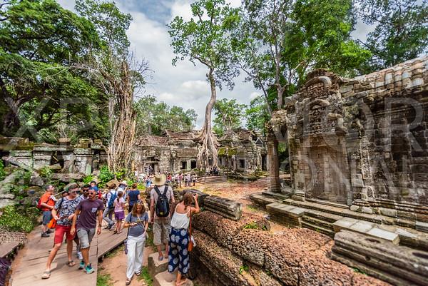 Tourists at Ta Prohm Temple