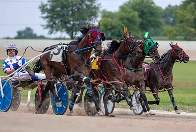 Rockin Peggy, Carrie's Desire, Gypsy Rose, Adelita Hanover