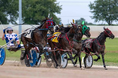 Rockin Peggy, Grimalkin, Carrie's Desire, Gypsy Rose, Adelita Hanover